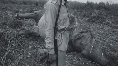 1011_Poachers_main